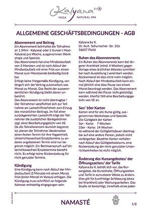 Allgemeine Geschäftsbedingungen 08/2016
